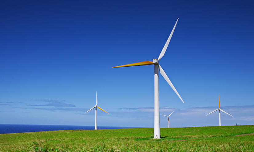 The Wind Power Debate