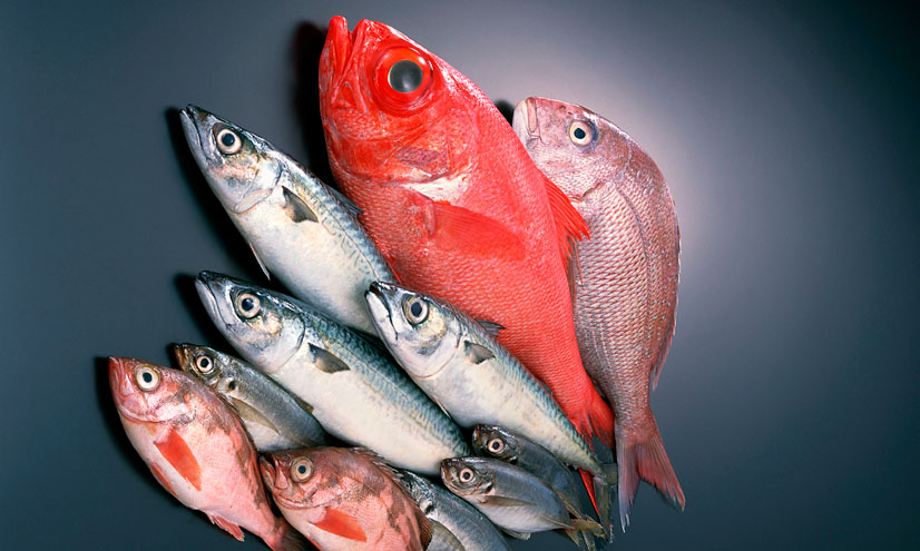 Can Eating Fish Prevent Murder?