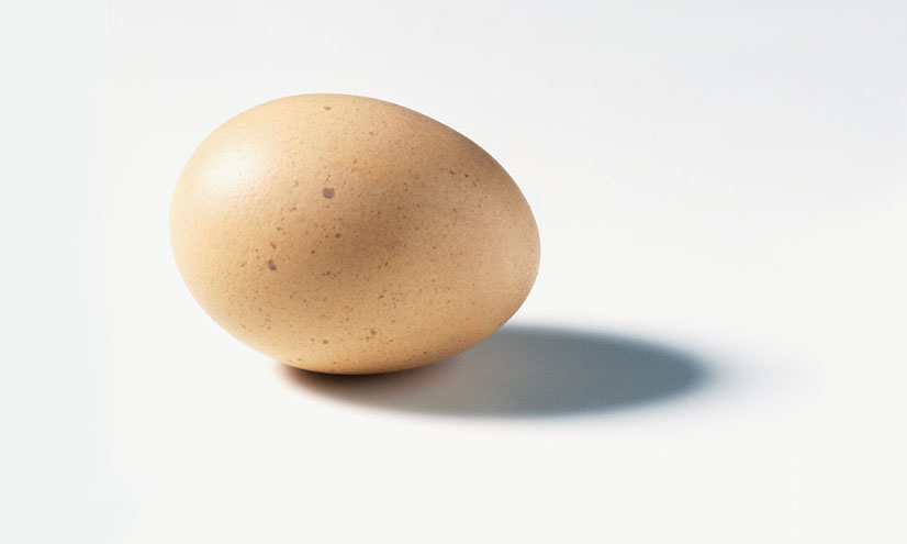 Why Are Eggs Egg-Shaped?