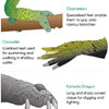 Reptile Adaptations