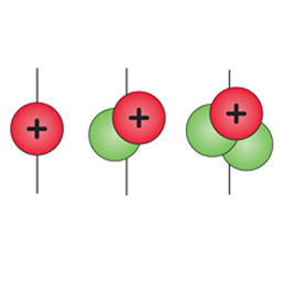The Nuclei of the Three Isotopes of Hydrogen (unlabeled)